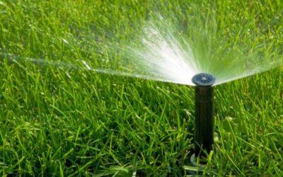 Systemy nawadniania ogrodów