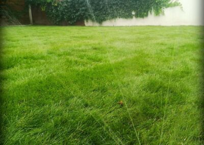13. Nawodnienie ogrodu - System nawadniający - Mysłowice Vera Garden
