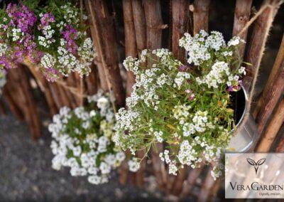 5. Dekoracje ślubne, aranżacje ogrodu - Czeladź Vera Garden