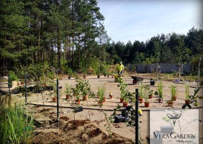 Realizacja ogrodów, nasadzanie roślin - Czeladź, Vera Garden