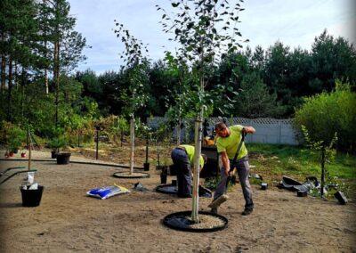 Realizacja ogrodów, nasadzanie roślin - Konopiska, Vera Garden