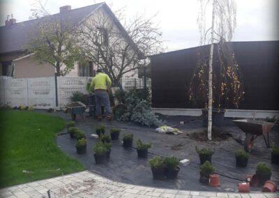 Realizacja ogrodów, nasadzanie roślin - Olkusz, Vera Garden