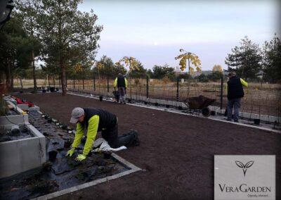Realizacja ogrodów, nasadzanie roślin - Piotrków Trybunalski, Vera Garden