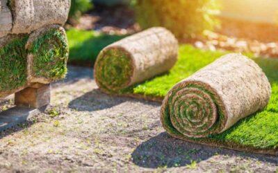 Zakładanie trawników z rolki