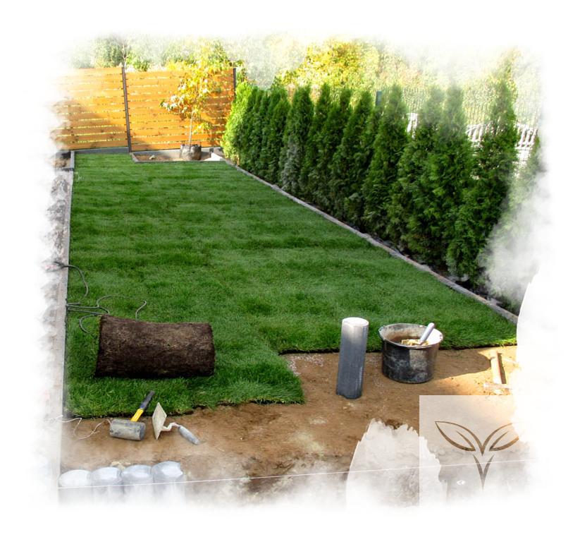 Zakładanie Trawnika Z Rolki Cennik Vera Garden Trawniki Firma Ogrodnicza